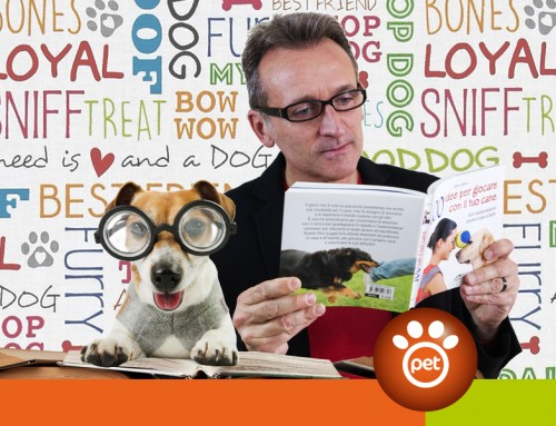 Pet Content Marketing: ricominciamo dalla descrizione prodotti