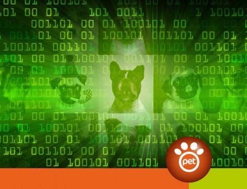 Il significato di Figitale nel settore Pet?