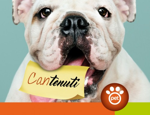 I contenuti sono la benzina del Pet Marketing