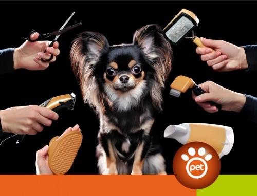 Come tenere pulito il tuo cane