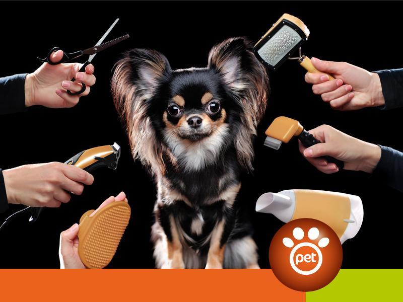 dogfather - come tenere pulito il tuo cane