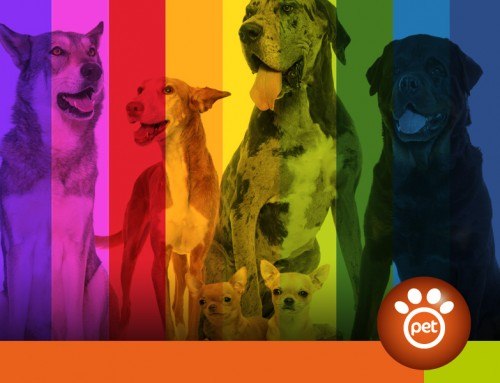 Pet Marketing: le buyer personas