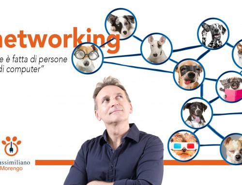 Pillola #4: i benefici della Pet Marketing Automation