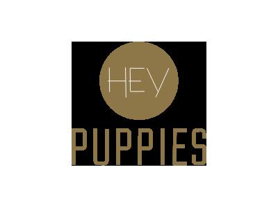 hey puppies