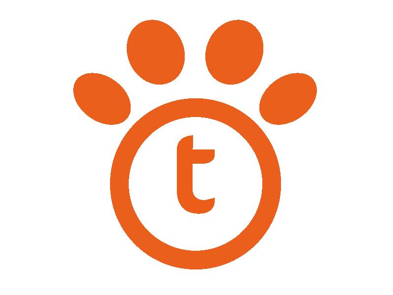 trasformazione di pet marketing