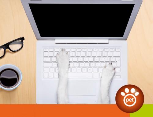 Il successo del tuo e-commerce inizia dal Pet Business Plan