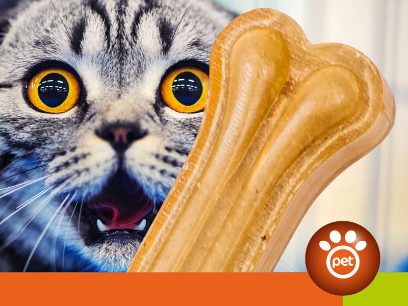 Pet Marketing - il prodotto giusto, al cliente giusto, al momento giusto, sul canale giusto