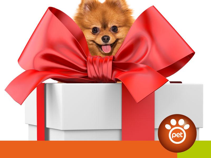 Pet Marketing - buoni regalo e abbonamenti